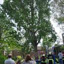Brandweer verwijdert gevaarlijk hangende tak boven speeltuin in heemskerk