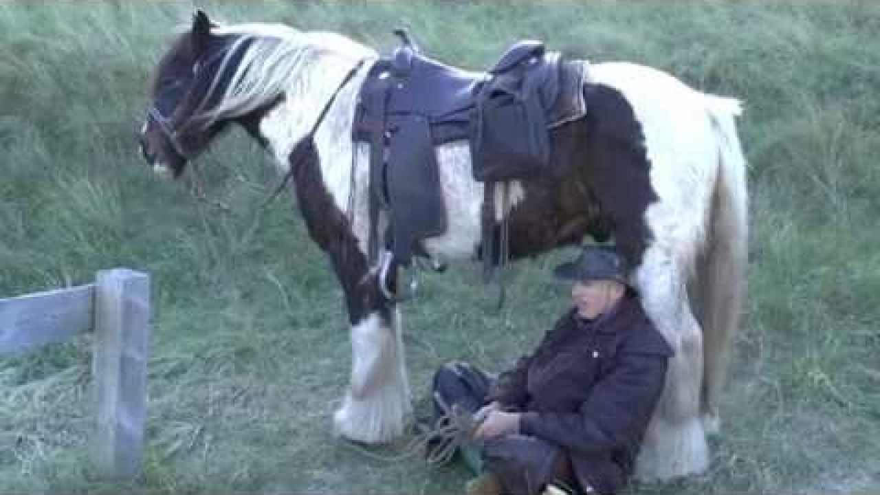 Man en paard. 1/1